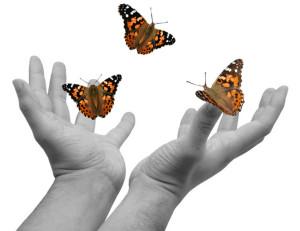 Hands-releasing-butterflies